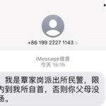 王靖渝因为质疑士兵阵亡数字,受到重庆警方跨境追逃