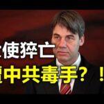 德国驻中国大使猝死,各国驻中国大使成高危险行业