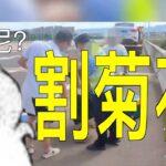 浙江温州一女子坐车上高速,被割菊花.尴尬了!